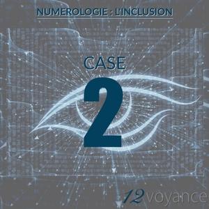 Nombre d'inclusion 2